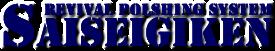 SAISEIGIKEN-再生技研|磨き・コーティング施工